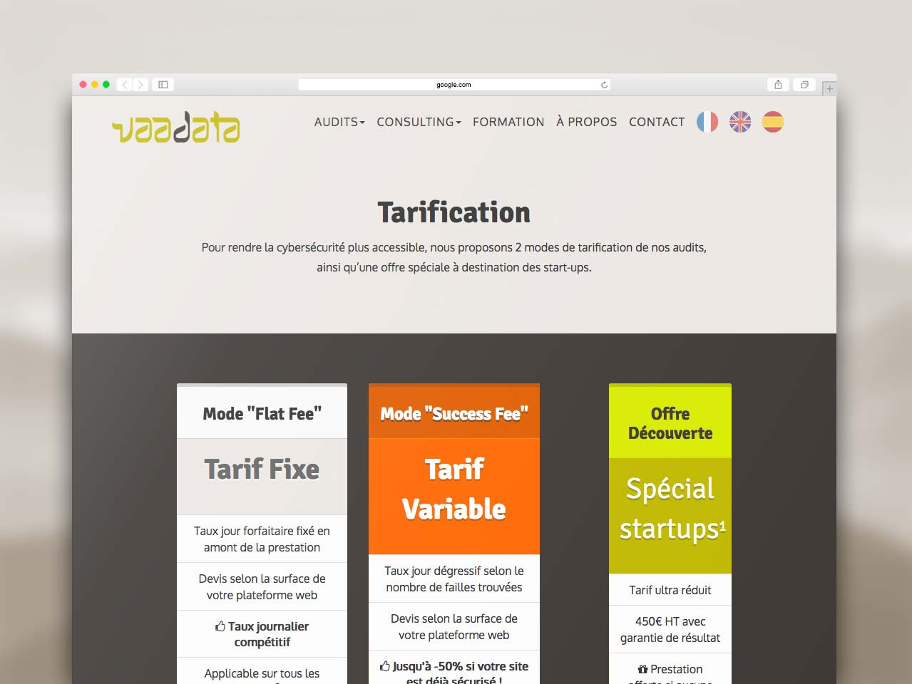 Webdesign section Tarifs site Vaadata